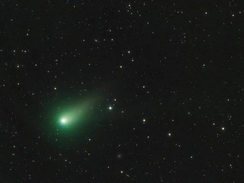 """La cometa di Natale """"Catalina"""""""