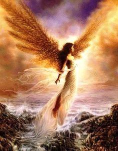 Angeli… Soqedhazi