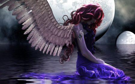 Angeli … Phul