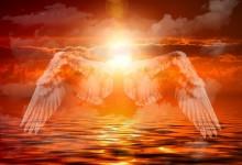 Angeli… Och