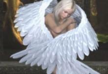 Gli Angeli rispondono: In che modo posso essere più felice?