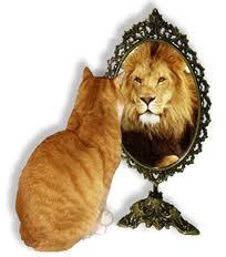 leone allo specchio