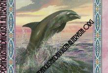Il messaggio delle Sirene e dei Delfini: Liberati