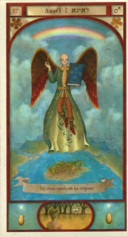 aniel 37