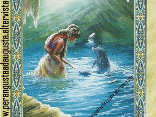 Il messaggio delle Sirene e dei Delfini: Rivolgerti a un esperto