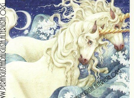 Il messaggio degli Unicorni: Fratelli e sorelle