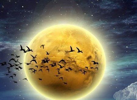 Realizza i tuoi desideri con l'aiuto della Luna Piena