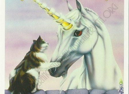 Il messaggio degli Unicorni: Lavoro di squadra