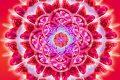 Mandala e affermazioni positive per attirare l'amore