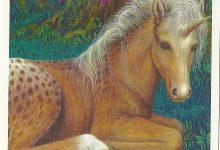 Per chi ha scelto la carta degli Unicorni