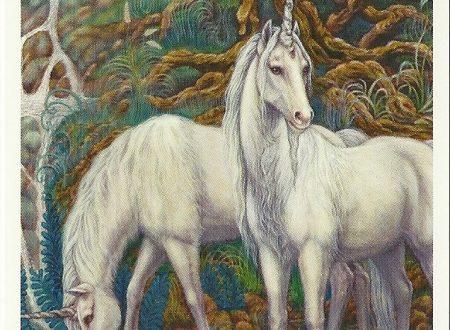 Il messaggio degli Unicorni: Ascolta i tuoi veri sentimenti