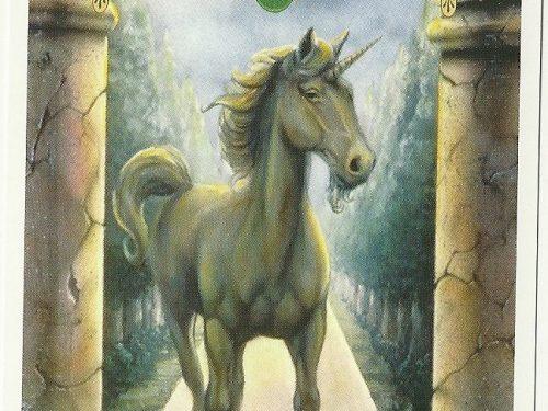 Il messaggio degli Unicorni: Cambiamento