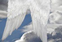 Chiamare gli Angeli – Doreen Virtue