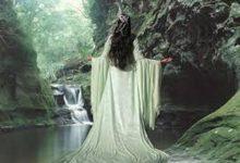 Gli spiriti delle piante – Doreen Virtue