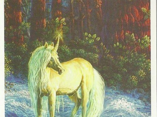 Il messaggio degli Unicorni: Un bel si forte e chiaro