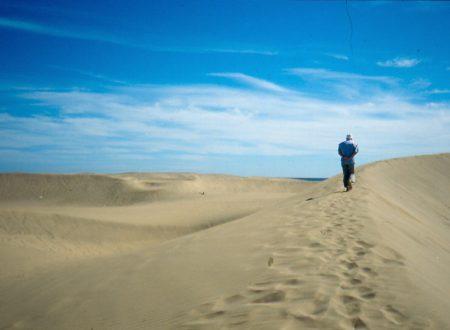Il pianto del deserto