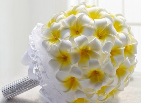 """L'Energia curativa dei fiori: """"Frangipani con l'Arcangelo Raziel."""""""
