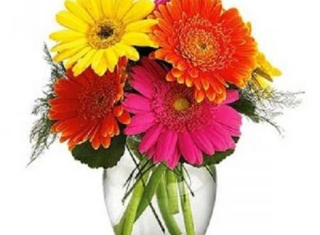 "L'Energia curativa dei fiori: ""Gerbera con l'Arcangelo Jeremiel """