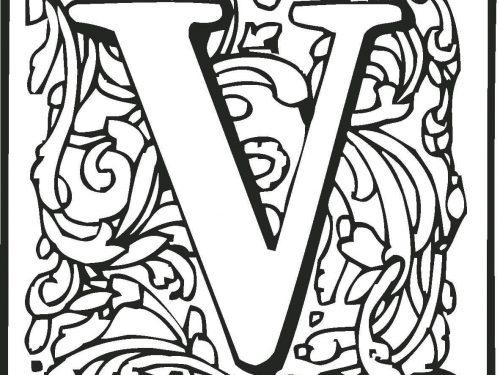 ll dizionario dei Segni (lettera V)