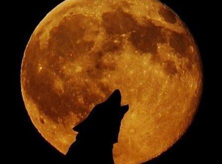 La Superluna più bella e luminosa dell'anno dà il benvenuto al 2018