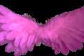 Messaggio Angelico del 01 gennaio