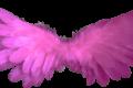 Messaggio Angelico del 03 gennaio