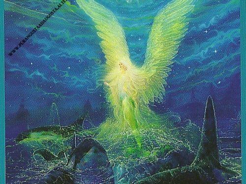 I Tarocchi degli Angeli del 01 luglio