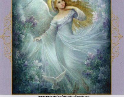 L'Oracolo degli Angeli dell'Abbondanza del 09 novembre