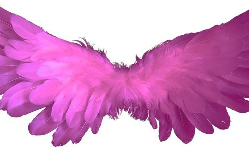 Messaggio Angelico del 26 novembre