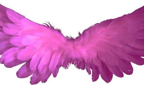 Messaggio Angelico del 27 novembre