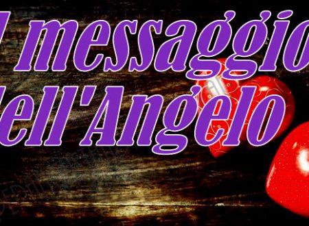 """Il messaggio dell'Angelo  """"Conforto"""""""