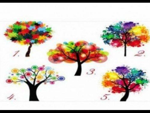 Test: Scegli un albero e scopri il significato