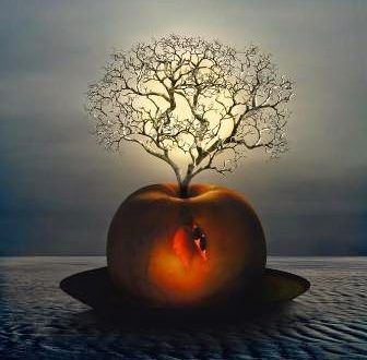 Ascolta la tua voce interiore e onora la tua saggezza per un'esistenza di profondo benessere – Louise Hay
