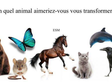 Test: In quale animale ti vorresti trasformare?