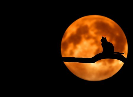 Luna piena del 13 ottobre: Espansione della Coscienza