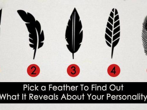test: Scegli una piuma, scopri cosa dice della tua personalità