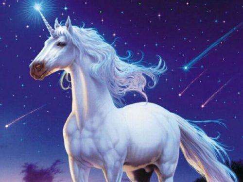 Gli Unicorni