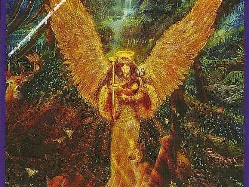 I Tarocchi degli Angeli del 08 aprile