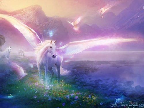 Armonizzazione Angelica: Angel and Unicorn Healing Reiki
