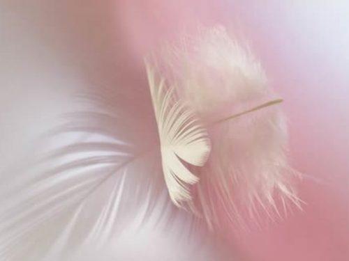 Giuditta Dembech: Invocazione agli Arcangeli della Luce